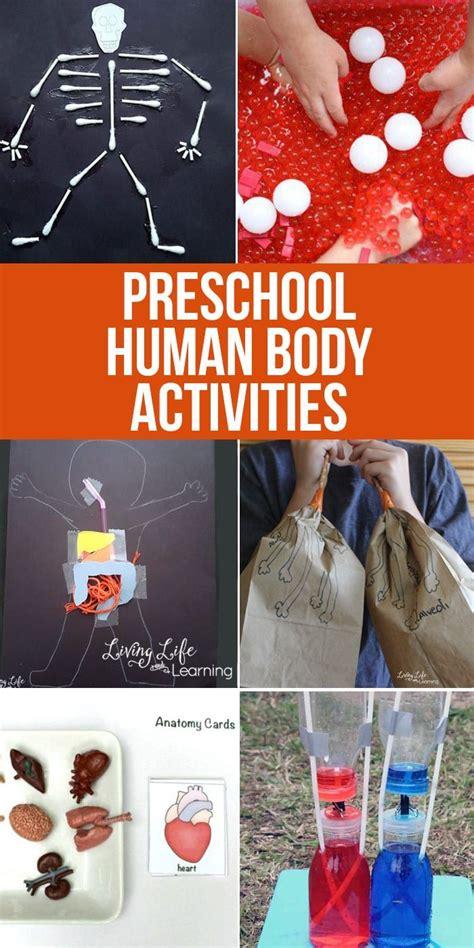 preschool human body activities human body activities