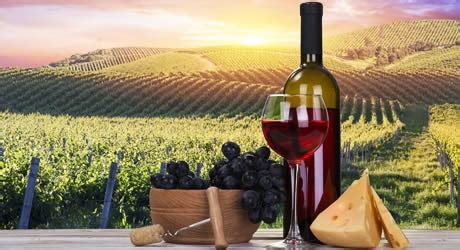 driven indulgence private yarra valley wine tours