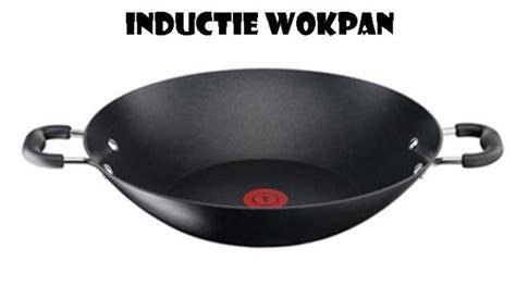 Wokpan Elektrisch Kopen Online Internetwinkel