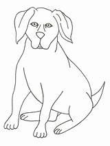 Schnauzer Labrador Coloriages Assit Pokemon Ancenscp sketch template