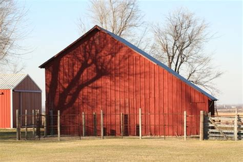 Cheap Barn how to build cheap barns sapling