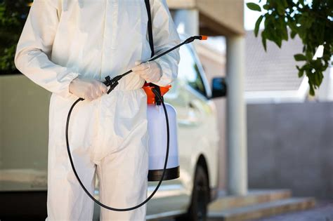 pest control tips  suggestions     arizona
