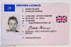 dvla give motorist licence using photo from when he was 11 With apply for driving license provisional