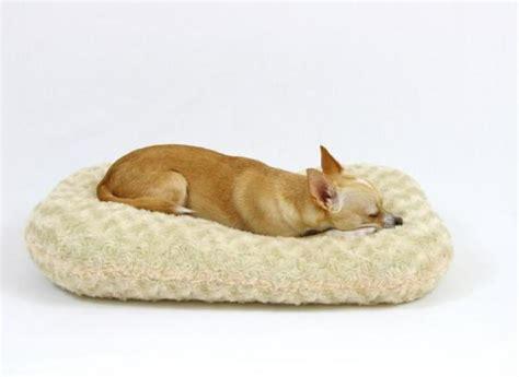 Comment Faire Dormir Son Chien Dans Son Panier  5 étapes