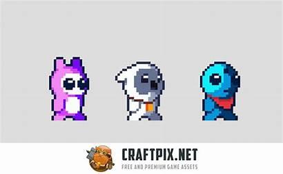 Pixel Sprites Hero Tiny Sprite 2d Animation