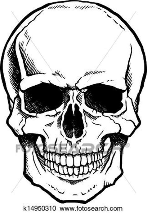 black  white human skull  jaw clipart
