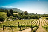 Sonoma, California | Best Vacation Spots in the US ...