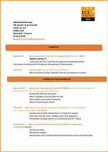 Hotesse De Caisse Lyon : 9 cv hotesse de caisse lettre de demission ~ Dailycaller-alerts.com Idées de Décoration