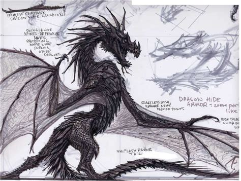 The Elder Scrolls V Skyrim Dragon Concept Art By The