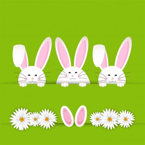 Bunny Background Easter Bunny Background With Daisies Vector Free