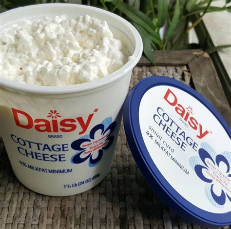 cottage cheese brands week 4 weigh in low carb meals traveling low carb