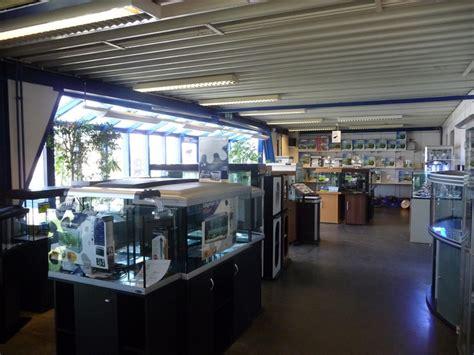 magasin d aquarium en belgique visite chez histoire d eaux