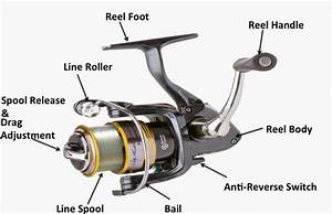 Baitcasting Reel Parts Diagram