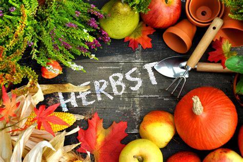 Garten Aufgaben Im Herbst by Gartenarbeit Im Herbst Gartenarbeit Im Herbst