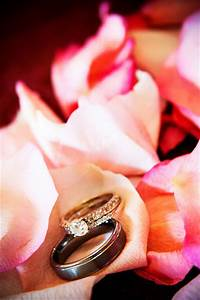 negotiating ring prices lds wedding planner With lds wedding rings