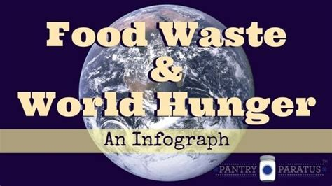 Food Waste & World Hunger (An Infograph)