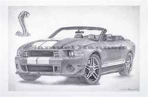 How To Draw A Ford Mustang Shelby Gt500 - Car Autos Gallery
