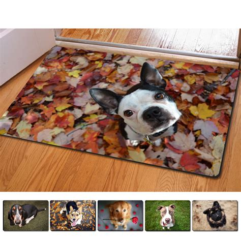 Pet Doormats by Pet Animal Doormat Non Slip Kitchen Bathroom