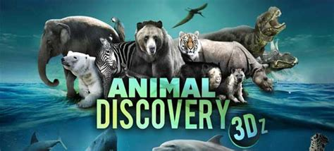 animal discovery  android games   android