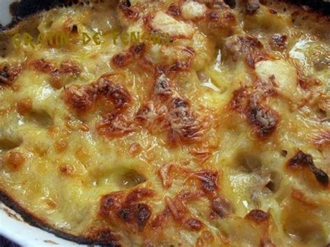 cuisiner le fenouil au four les meilleures recettes de fenouil et gratins
