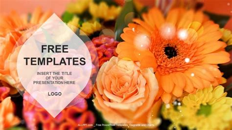flowers nature  templates