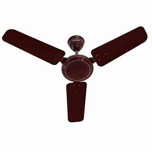 Buy usha ace ex quot brown ceiling fan at best price in india