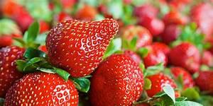 Erdbeeren Wann Pflanzen : wann erdbeeren pflanzen top der richtige sorgt dafr da sich die pflanze optimal ausbreiten kann ~ Watch28wear.com Haus und Dekorationen
