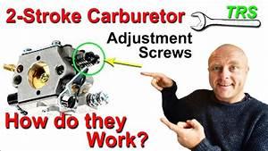 Two Stroke Cycle Carburetor Adjustment Screws  What Is