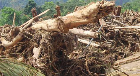 Pt Minta Dimana by Pembalakan Liar Hutan Lindung Bongkaras Minta
