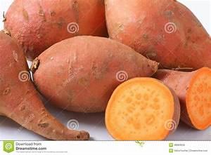 Sweet Potato Roots Stock Photo - Image: 48984059