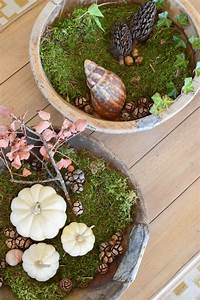 Dekoideen Herbst Winter : dekoideen mit k rbis f r den herbst k rbisse nat rlich dekorieren tischdeko tisch dekor ~ Markanthonyermac.com Haus und Dekorationen