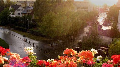 rain  city beautiful pics hd wallpapers