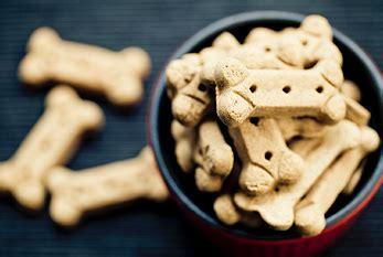 international dog biscuit appreciation day feb
