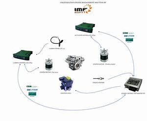 Cogeneration Chp Engine Management System