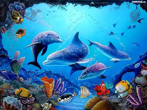 ryby delfiny rafa