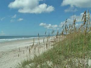 Gulf State Park (Gulf Shores) - 2018 What to Know Before ...