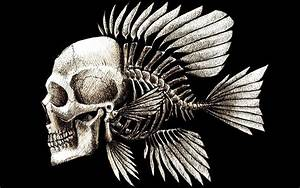 Human Skull with Fish Skeleton HD wallpaper | HD Latest ...