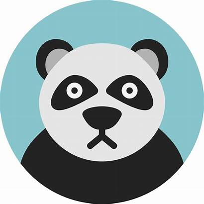 Panda Animal Svg Icon Icono Zoo Icons