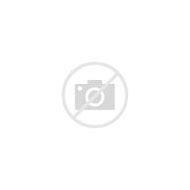 jacked-up-chevy-trucks