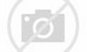 Les légendes du rock - Prince - Rolling Stone