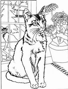 Dessin Intérieur Maison : coloriages de chats ~ Preciouscoupons.com Idées de Décoration