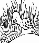 Grass Coloring Puppies Between Colorluna Puppy Luna Well Grow Template sketch template