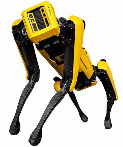 Boston Dynamics Robot Dog Selling Its Fluffy