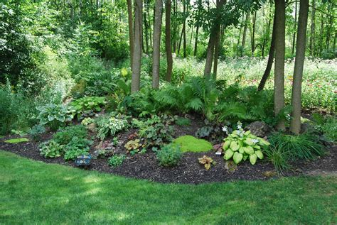 Wooded Backyard Landscaping Ideas Woodland Gardens3  Best. L Shaped Kitchen Renovation Ideas. Garden Ideas Dublin. Easter Basket Ideas Inexpensive. Landscape Ideas Plans. Bedroom Ideas Nz. Sensory Table Ideas Toddlers. Contemporary Bathroom Decorating Ideas Pictures. Small Bathroom Remodel Tile