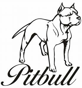 Drawn pitbull pitbull puppy - Pencil and in color drawn ...