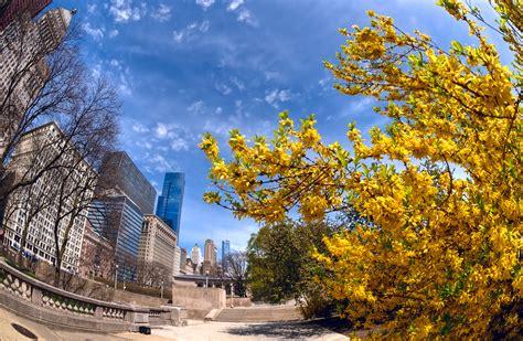 springtime  chicago