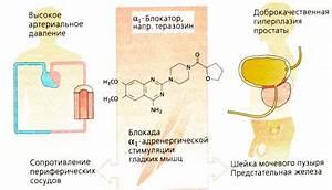 Синусовая тахикардия препараты при повышенном давлений