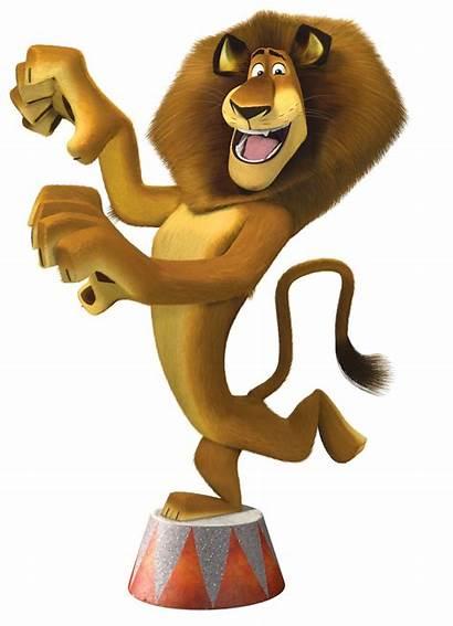 Madagascar Marty Popcorn Alex Imprimir Lion Movie