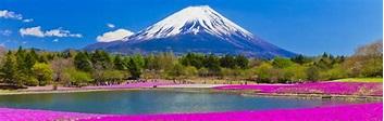 Mt. Fuji Area (Yamanashi) - Japan National Tourism Organization