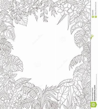 Rectangle Tropical Outline Leaf Plants Frame Hawaiian